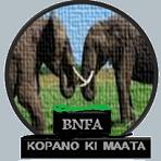 BNFA Logo
